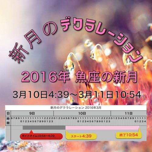 Img_5284_1