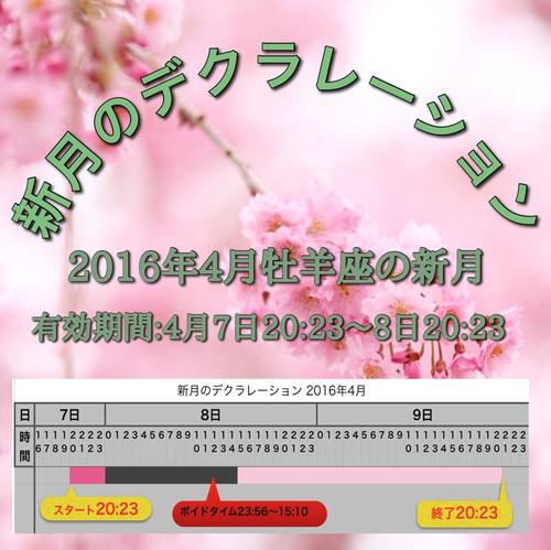 Img_5455_2